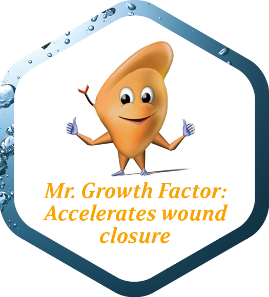 Icon representing accelerated wound closure